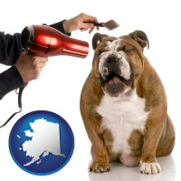 alaska map icon and a dog being groomed with a comb and a hair dryer