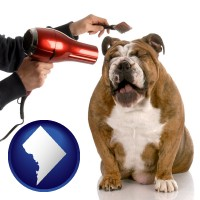 washington-dc map icon and a dog being groomed with a comb and a hair dryer
