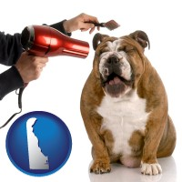delaware map icon and a dog being groomed with a comb and a hair dryer