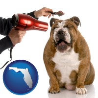 florida map icon and a dog being groomed with a comb and a hair dryer