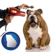 georgia map icon and a dog being groomed with a comb and a hair dryer