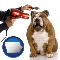 iowa map icon and a dog being groomed with a comb and a hair dryer