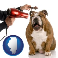 illinois map icon and a dog being groomed with a comb and a hair dryer