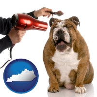 kentucky map icon and a dog being groomed with a comb and a hair dryer