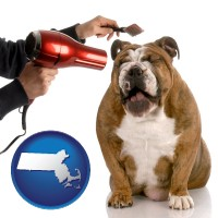 massachusetts map icon and a dog being groomed with a comb and a hair dryer