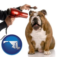 maryland map icon and a dog being groomed with a comb and a hair dryer