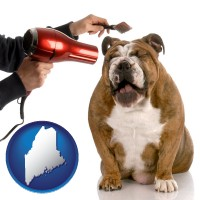 maine map icon and a dog being groomed with a comb and a hair dryer