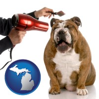 michigan map icon and a dog being groomed with a comb and a hair dryer