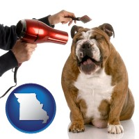 missouri map icon and a dog being groomed with a comb and a hair dryer