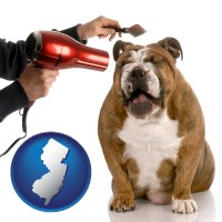 new-jersey map icon and a dog being groomed with a comb and a hair dryer