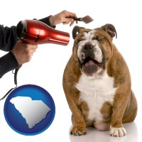 south-carolina map icon and a dog being groomed with a comb and a hair dryer
