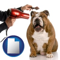 utah map icon and a dog being groomed with a comb and a hair dryer